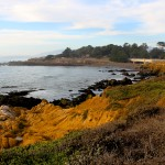 My Top 3 Reasons to Visit Cambria